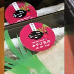 コネクト22通信VOL.9  事業者インタビュー掲載!